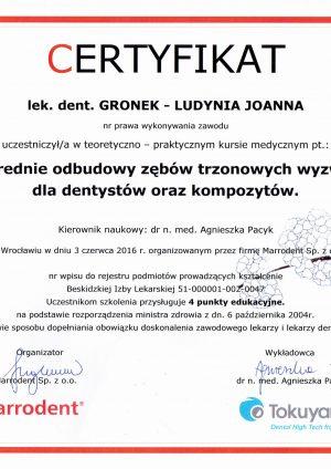 joanna-gronek-ludynia-ceryfitkat-odbudowa-zebow-trzonowych